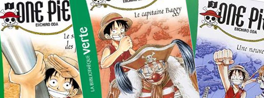 Illustration one piece bibliotheque verte